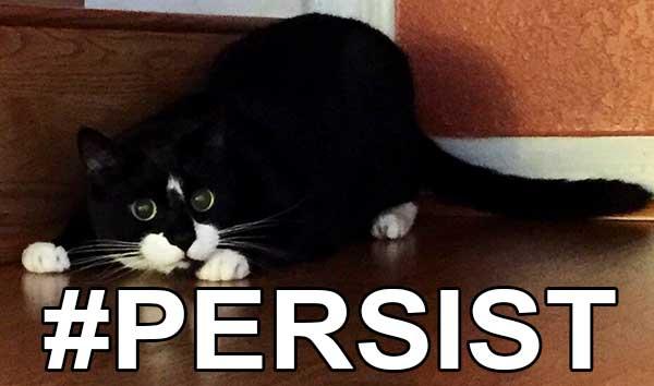 persist!